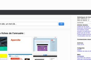 1com.fr : support de communication web