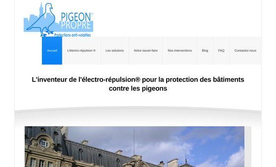 Pigeon Propre : expert en protections anti-volailles